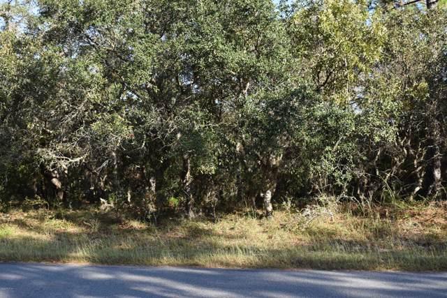 3914 N Longvalley Road, Hernando, FL 34442 (MLS #563616) :: Bosshardt Realty
