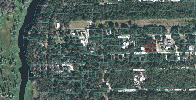 14679 NE 213TH PLACE, Fort Mccoy, FL 32134 (MLS #563626) :: Bosshardt Realty