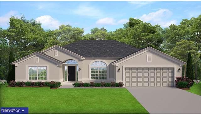 3214 SE 43RD Avenue, Ocala, FL 34480 (MLS #563635) :: Pepine Realty