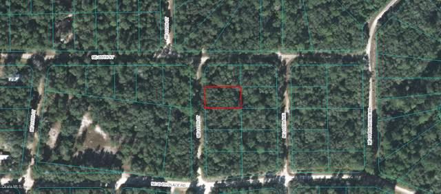 TBD Ne 112Th Ct, Fort Mccoy, FL 32134 (MLS #563748) :: Bosshardt Realty