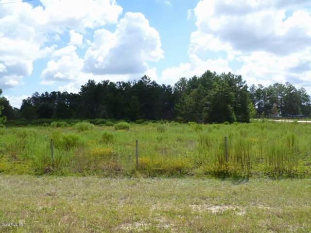 TBD SE 114 Avenue, Morriston, FL 32668 (MLS #563809) :: Pepine Realty