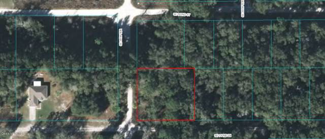 0 SE 142 Lane, Summerfield, FL 34491 (MLS #563959) :: Bosshardt Realty