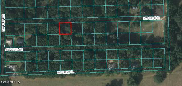 TBD NW 123rd Place, Citra, FL 32113 (MLS #564090) :: Pepine Realty
