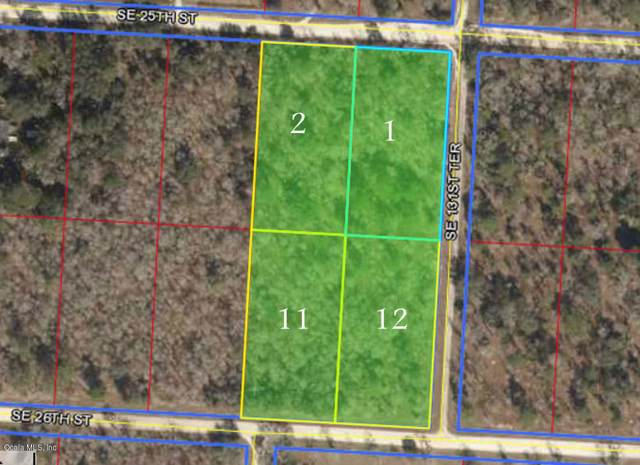13150 SE 25th Street, Morriston, FL 32668 (MLS #564119) :: Pepine Realty