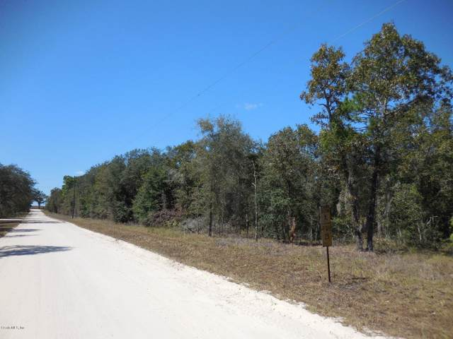 13130 SE 25th Street, Morriston, FL 32668 (MLS #564120) :: Bosshardt Realty