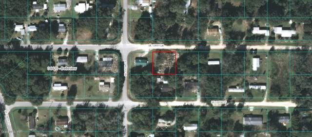10768 Se 128Th Ln, Belleview, FL 34420 (MLS #564133) :: The Dora Campbell Team