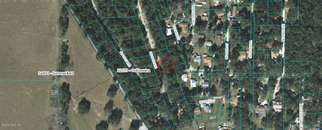 TBD Se 106Th Ave, Ocklawaha, FL 32179 (MLS #564146) :: Bosshardt Realty