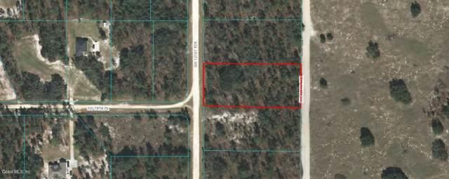 000 SW 121st Terrance Terrace, Dunnellon, FL 34432 (MLS #564198) :: Pepine Realty