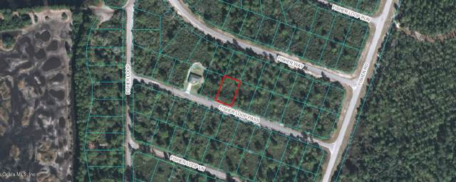 TBD Fisher Loop Pass, Ocklawaha, FL 32179 (MLS #564275) :: Bosshardt Realty