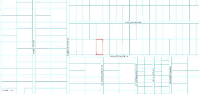 0 SW Cottonwood Lane, Dunnellon, FL 34431 (MLS #564305) :: Pepine Realty