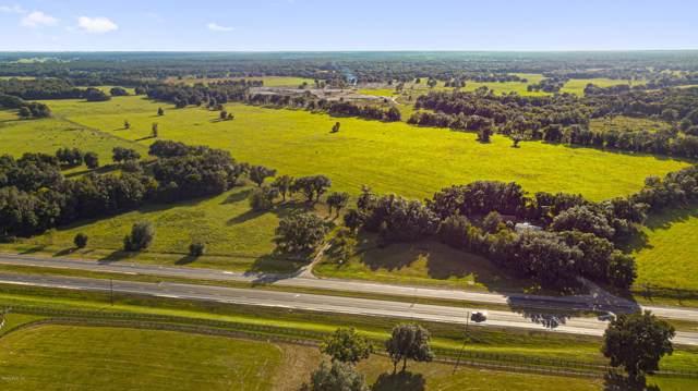16756 NE Us Hwy 27, Williston, FL 32696 (MLS #564464) :: Realty Executives Mid Florida