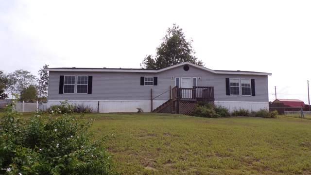 14245 SE 60th Avenue, Summerfield, FL 34491 (MLS #564659) :: Bosshardt Realty