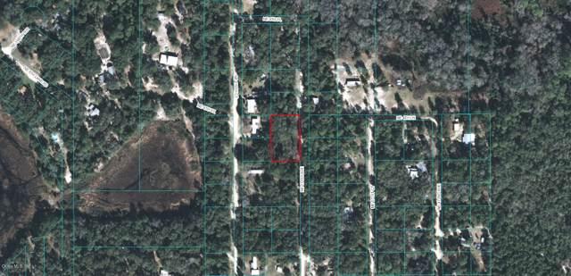 380 NE 171st Avenue, Silver Springs, FL 34488 (MLS #564742) :: Realty Executives Mid Florida