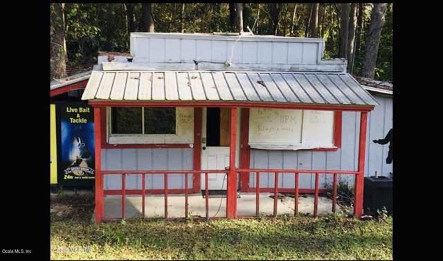 9591 SE Highway 464C, Ocklawaha, FL 32179 (MLS #565449) :: Pepine Realty