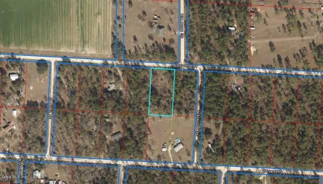 14050 SE 20th Street, Morriston, FL 32668 (MLS #565661) :: Pepine Realty