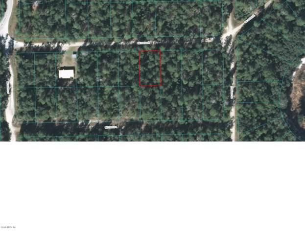 TBD NE 236TH Place, Fort Mccoy, FL 32134 (MLS #565709) :: Bosshardt Realty