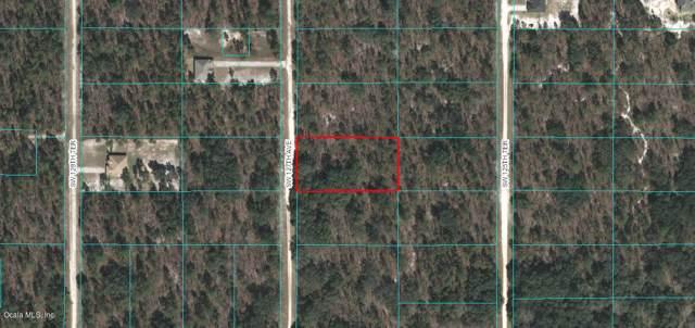 Lot 4 SW 127th Avenue, Dunnellon, FL 34432 (MLS #565858) :: Bosshardt Realty