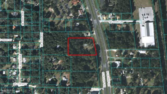 11638 S Highway 301, Belleview, FL 34420 (MLS #565893) :: Globalwide Realty