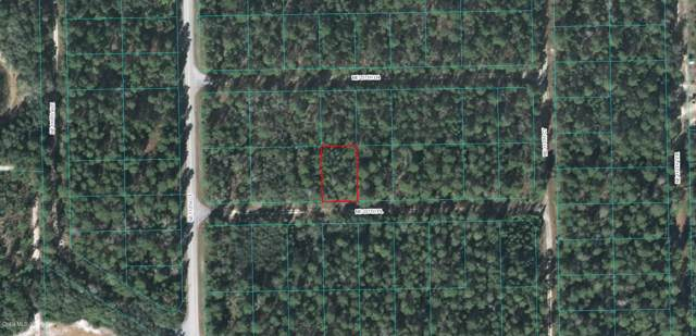 110 NE 237TH Place, Fort Mccoy, FL 32134 (MLS #565918) :: Bosshardt Realty