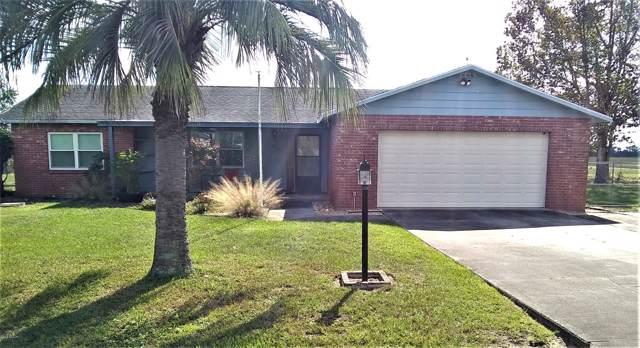 3060 SW 98th Street Road, Ocala, FL 34476 (MLS #566040) :: The Dora Campbell Team