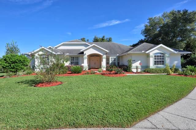 2319 SE 30th Place, Ocala, FL 34471 (MLS #566083) :: Bosshardt Realty
