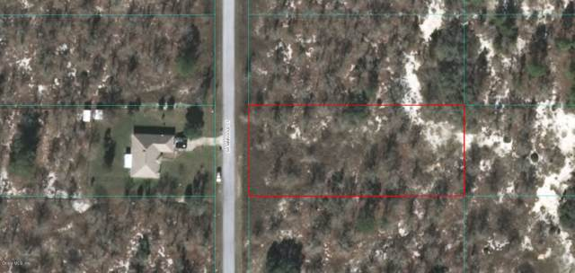 Lot 34 SW Marigold St., Dunnellon, FL 34431 (MLS #566108) :: Pepine Realty