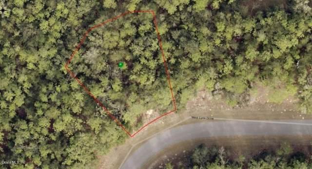 51 W Lynx Drive, Citrus Springs, FL 34434 (MLS #566133) :: Bosshardt Realty