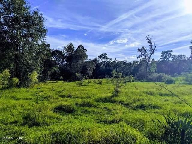 8841 N Presnell Terrace, Dunnellon, FL 34433 (MLS #566173) :: Bosshardt Realty