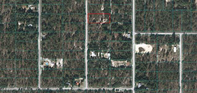 Lot 29 SW Bigtree Rd, Dunnellon, FL 34431 (MLS #566183) :: Pepine Realty