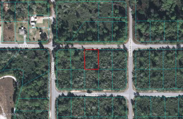 TBD Fisher Pass, Ocklawaha, FL 32179 (MLS #566389) :: Realty Executives Mid Florida