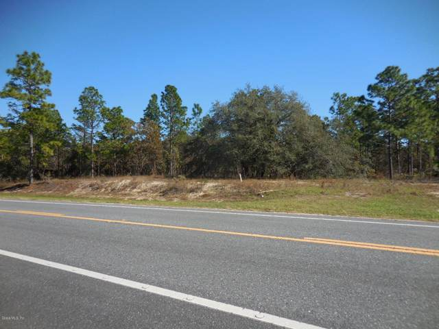 2041 SE State Road 121, Morriston, FL 32668 (MLS #566393) :: Globalwide Realty