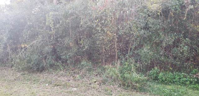 0 Cedar Rd, Ocala, FL 34472 (MLS #566704) :: Pepine Realty
