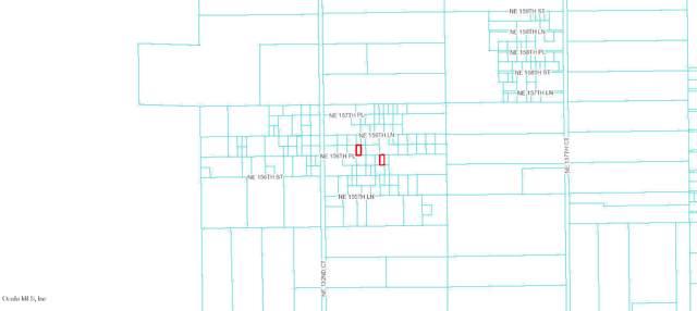 0 NE 156th Lane, Fort Mccoy, FL 32134 (MLS #566716) :: Bosshardt Realty