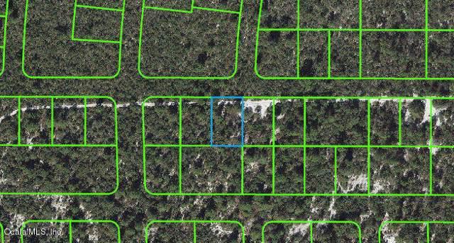 479 Souvenir Lane, Lake Placid, FL 33852 (MLS #566855) :: Pepine Realty