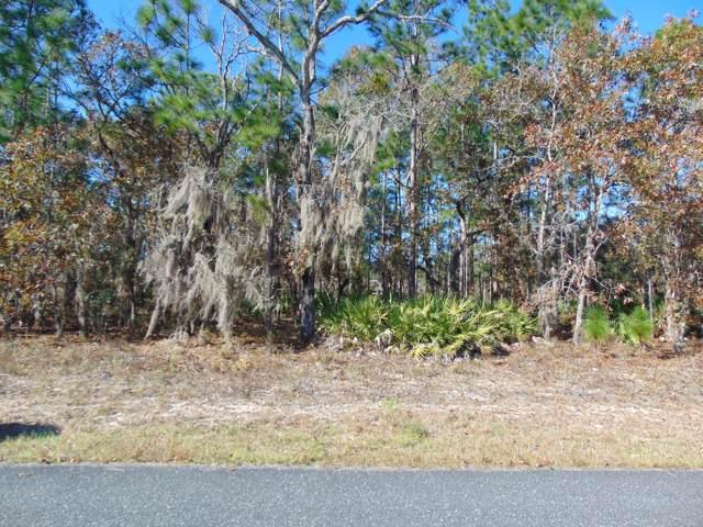 7273 N Glenridge Circle, Citrus Springs, FL 34434 (MLS #566903) :: Bosshardt Realty