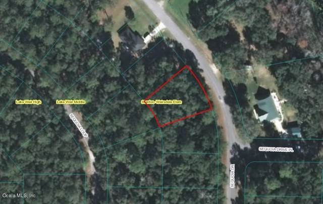 TBD Sequoia Drive, Ocklawaha, FL 32179 (MLS #566916) :: The Dora Campbell Team
