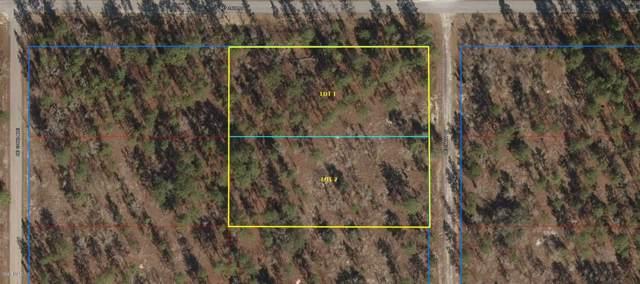 LOTS 1.2 SE 134TH CT, Dunnellon, FL 34431 (MLS #566966) :: The Dora Campbell Team