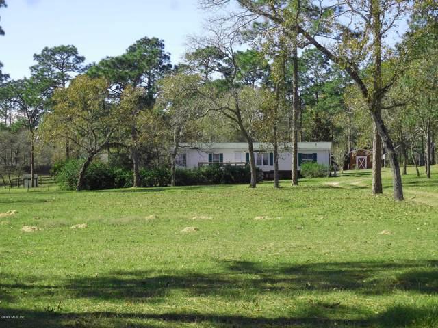 7850 SE 131st Avenue, Morriston, FL 32668 (MLS #566978) :: Realty Executives Mid Florida