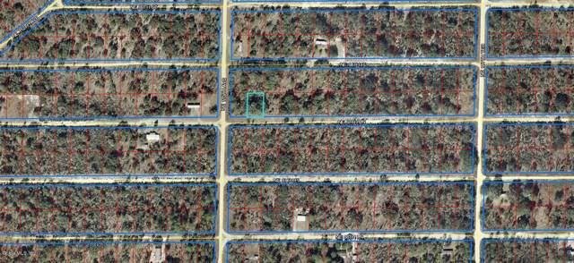 000 NE 67 Lane, Williston, FL 32696 (MLS #567063) :: The Dora Campbell Team