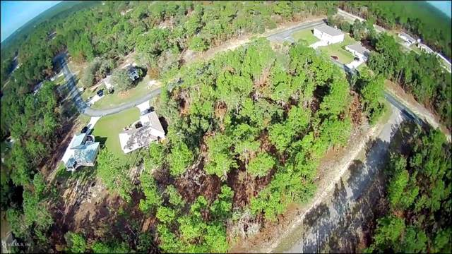 992 W Glenhaven Drive, Citrus Springs, FL 34434 (MLS #567225) :: Bosshardt Realty