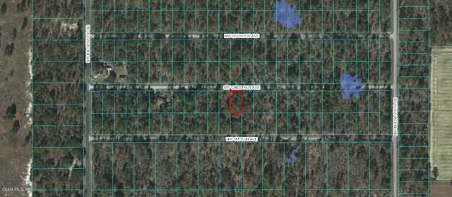 00 NW Chestnut Avenue, Dunnellon, FL 34431 (MLS #567227) :: Better Homes & Gardens Real Estate Thomas Group