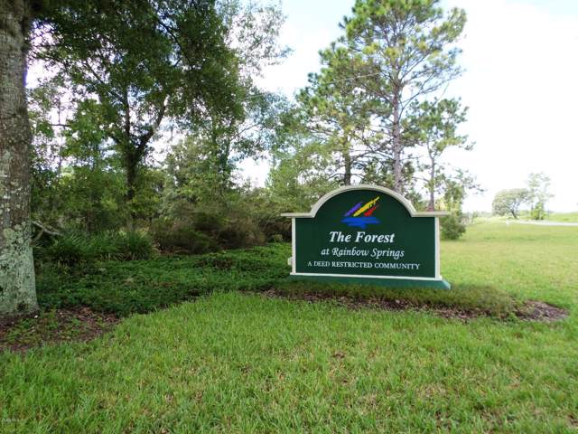 Lot 5 SW 185th Circle, Dunnellon, FL 34432 (MLS #567296) :: Better Homes & Gardens Real Estate Thomas Group