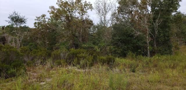 Lot 19 NE Levy Place, Williston, FL 32696 (MLS #568531) :: Bosshardt Realty