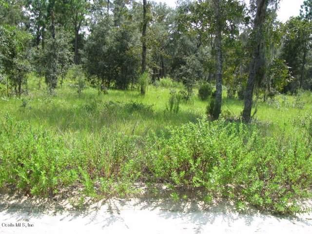 0 NE 15th Street, Williston, FL 32696 (MLS #569388) :: Bosshardt Realty