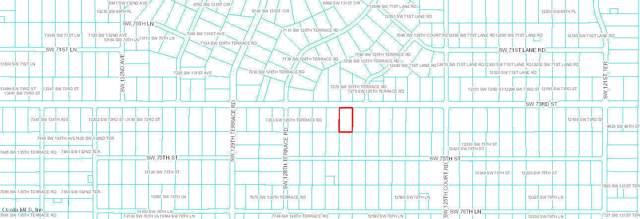 tbd SW 73 Rd Street, Dunnellon, FL 34432 (MLS #569419) :: Better Homes & Gardens Real Estate Thomas Group