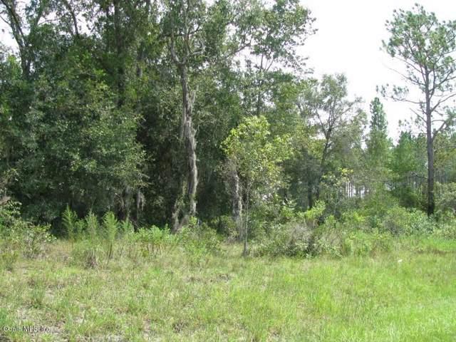 0 NE 50th Lane, Williston, FL 32696 (MLS #569420) :: Bosshardt Realty