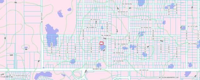 tbd SE 84 Th Court, Summerfield, FL 34492 (MLS #569453) :: Better Homes & Gardens Real Estate Thomas Group