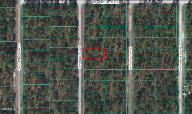 00 NW Redwood Drive, Dunnellon, FL 34431 (MLS #569455) :: Bosshardt Realty