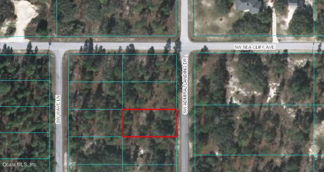 00 SW Admiral Landing Drive, Dunnellon, FL 34431 (MLS #569457) :: Pepine Realty