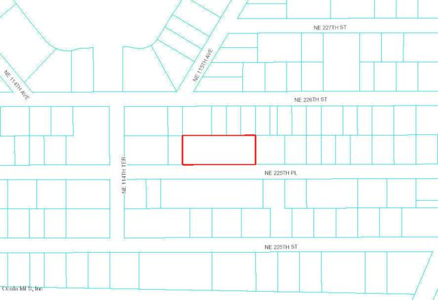 NE Address Not Published, Orange Springs, FL 32134 (MLS #439739) :: Bosshardt Realty